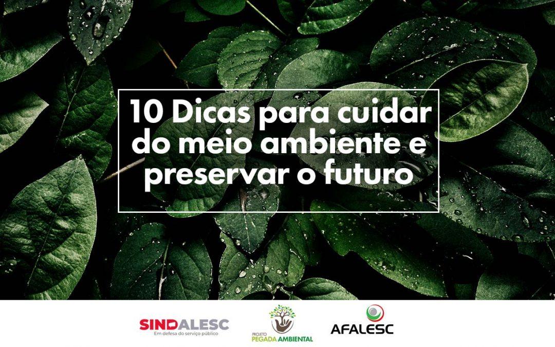 10 Dicas para cuidar do meio ambiente e preservar o futuro 🌳