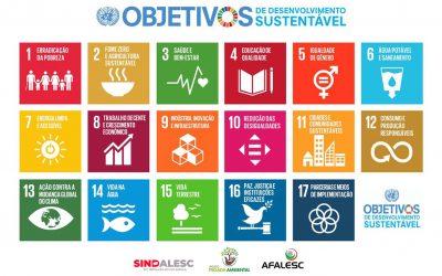 O desenvolvimento sustentável só é possível com a adesão de toda a sociedade.