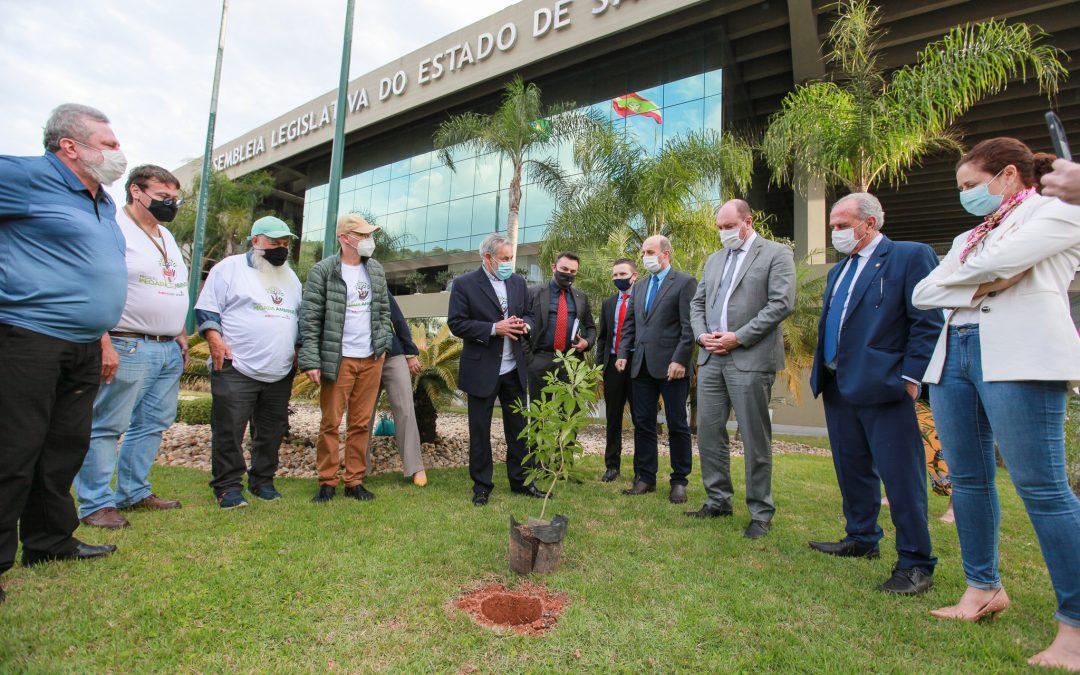 Lançamento do Projeto Pegada Ambiental na Alesc