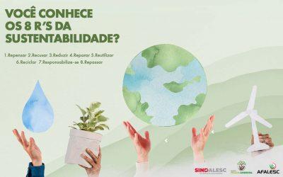 Você conhece os 8R's da sustentabilidade?